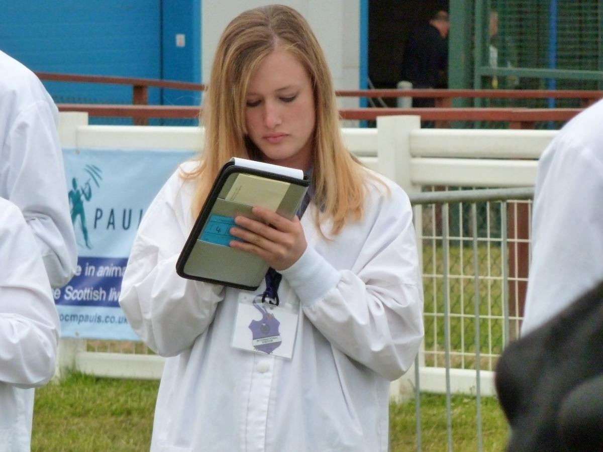 Dairy Cattle Judging