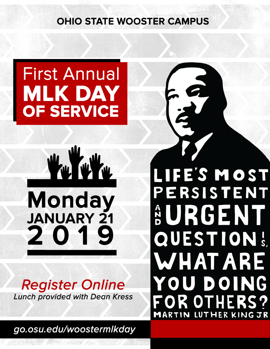 Martin Luther King Jr. Day of Service flyer