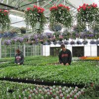 National Green House